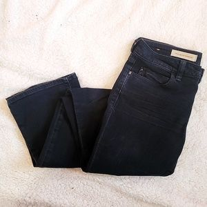 Pilcro and the Letterpress Bootcut Jeans - Size 28